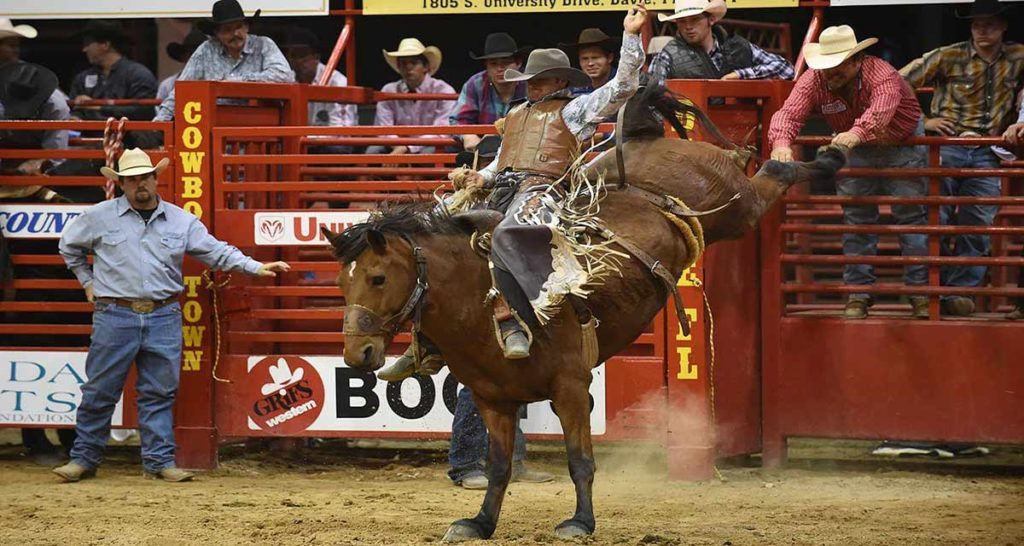 The List of the Best Rodeo Awards Winners